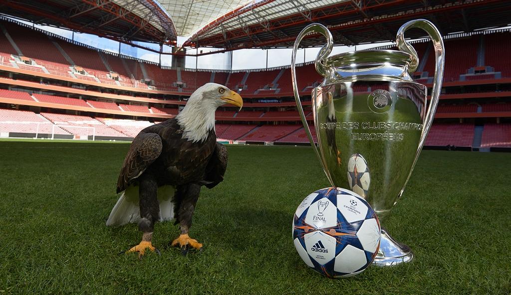 final Champions League Lisboa